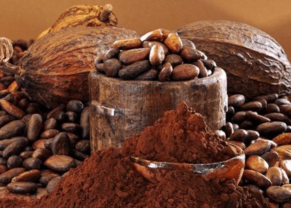 Importador de productos andinos