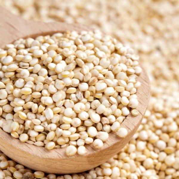 Importador de quinoa real blanca